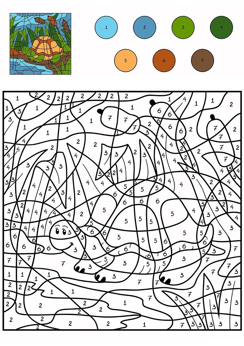 Раскраска: Морская черепашка